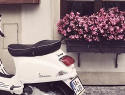 moped 便利屋