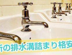 排水溝 洗面器 詰まる