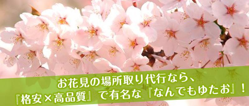 東京 お花見 場所取り代行
